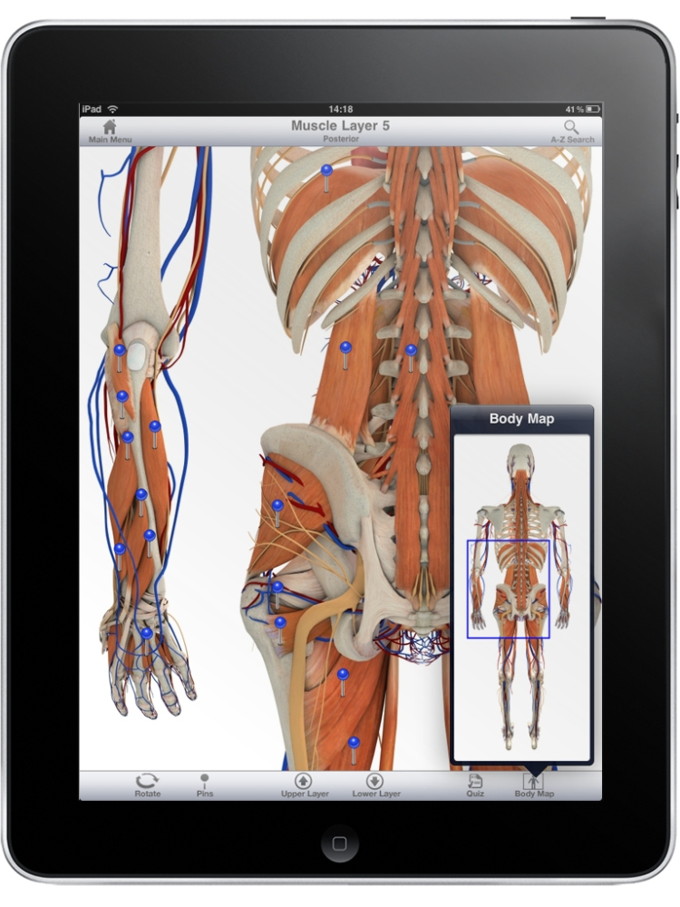 When Anatomy meets Technology - Learning and Educating with Anatomy Apps (1/5)