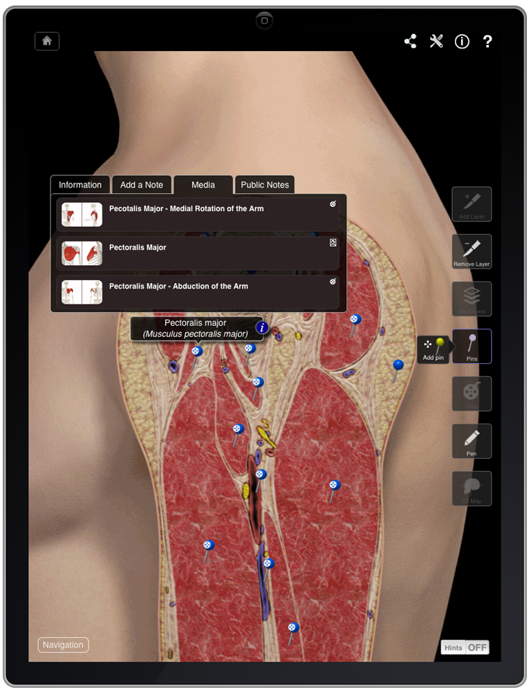 Next generation of anatomy apps for learning and patient education here NOW!! (1/4)